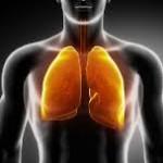 מחלת מקצוע - ריאות